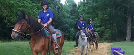 Take the little ones in your group on an equestrian adventure.